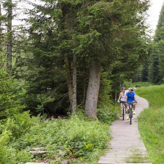 Défis Bike