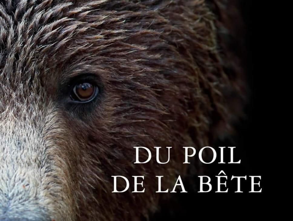 LES SENTIERS DE LA PHOTO LE HAUT DU TOT (copie)