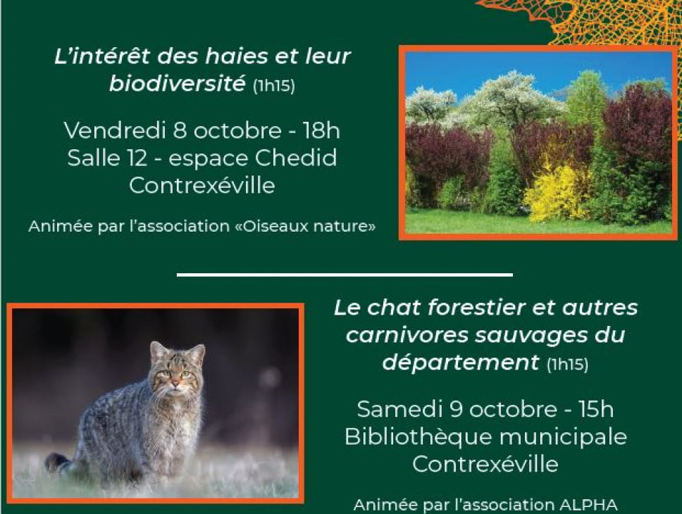 CONFERENCE 'LE CHAT FORESTIER'