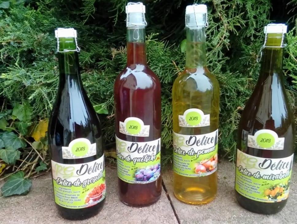 PRODUCTION DE VINS DE PETITS FRUITS