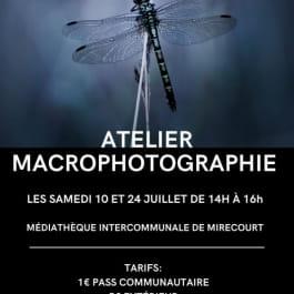 ATELIER MACROPHOTOGRAPHIE - DÉVELOPPEZ VOTRE CRÉATIVITÉ