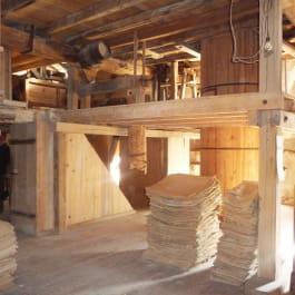 MARCHÉ D'ÉTÉ