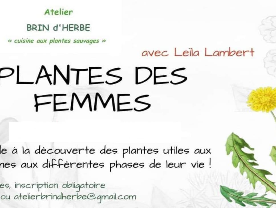 BALADE A LA DECOUVERTE DES PLANTES DES FEMMES