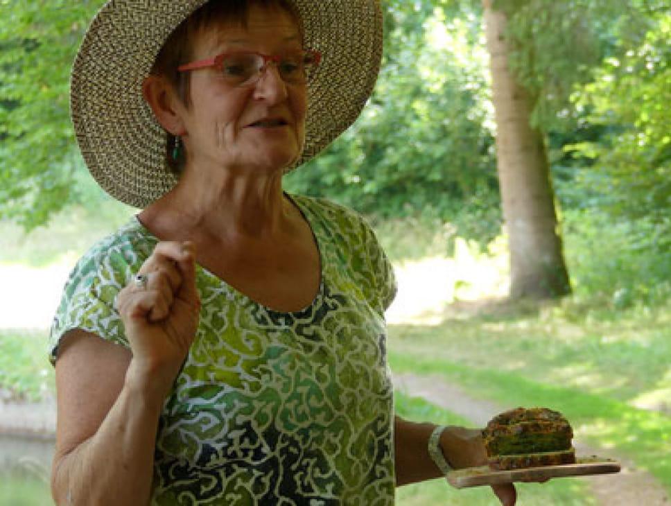 DÉCOUVERTE DES PLANTES SAUVAGES - CATHERINE LESTEVEN